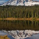 The Wonderlands of Mount Rainier by Jeff Goulden