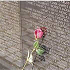Lonely Rose for those we lost by Scott Curti