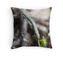 Inch Worm on Sundew Plant Throw Pillow