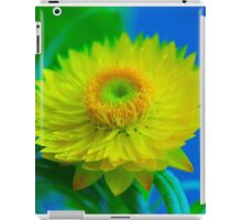 Fuzzy Yellow iPad Case/Skin