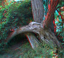 Colour Stereo Anaglyph Study #1 by Max Buchheit