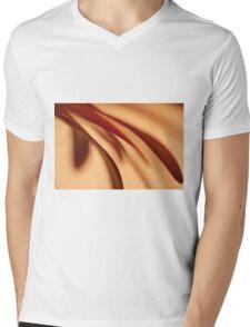Curves Mens V-Neck T-Shirt
