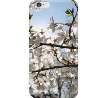 By The Light Of The Sun #1 iPhone Case/Skin