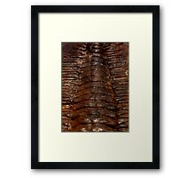 Eternity Series - The Path To Forever Framed Print