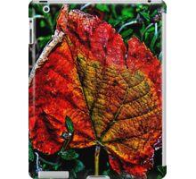 Autumn Leaves Fine Art Print iPad Case/Skin