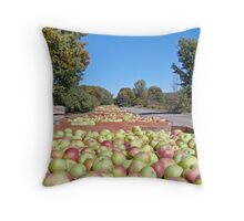 Come on...Have an Apple Throw Pillow