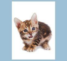 Funny ginger tabby kitten bengal One Piece - Short Sleeve