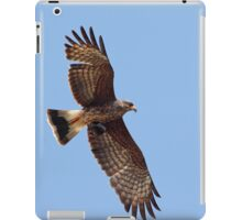 Snail Kite iPad Case/Skin