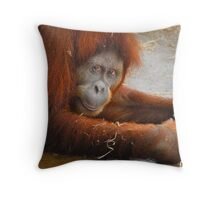 Cheeky (Color) Throw Pillow