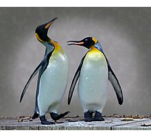 The Penguin who would be King Photographic Print