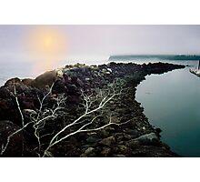 Neah Bay Photographic Print