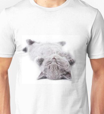 Funny gray fluffy kitten sleeps Unisex T-Shirt