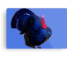 Be Thankful For Turkeys Metal Print