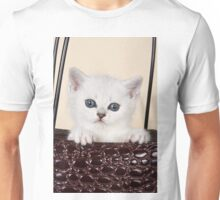 White British kitten with big eyes Unisex T-Shirt