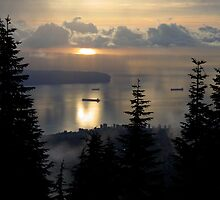 Grouse Mountain Vancouver B.C. Canada by Mario Alleyne