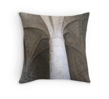 Strength in Antiquity Throw Pillow