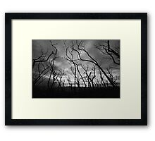 Another Black Saturday Framed Print
