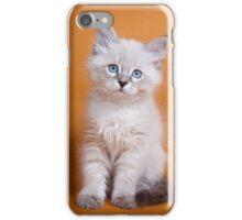 White fluffy Siberian cat iPhone Case/Skin