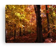 October in NH Canvas Print