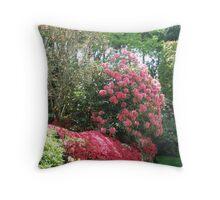 Introducing Leura Gardens~bd2 Throw Pillow