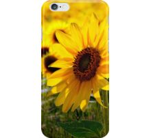 Sunny delight  iPhone Case/Skin