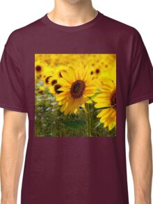 Sunny delight  Classic T-Shirt