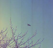 vintage sky by salwaosman