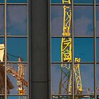Yellow Cranes by fotoWerner