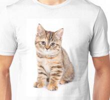 Striped red British kitten Unisex T-Shirt