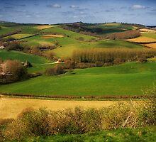 A Pastoral Symphony by Nigel Finn