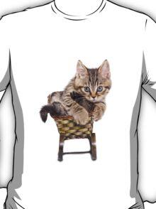 Funny Siberian striped kitten T-Shirt