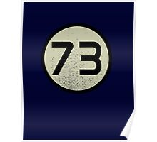 73 Poster
