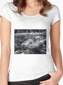 Baby harbour seal Women's Fitted Scoop T-Shirt