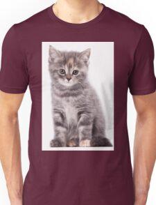Cute gray kitten Unisex T-Shirt