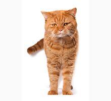 Big red cat Unisex T-Shirt