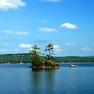 Island in Lake Winnepesaukee by Peggy Berger