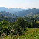 Majestic Carpathian Mountains by Elena Skvortsova