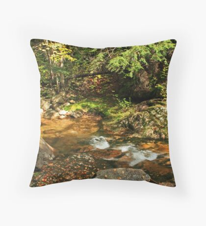 Stream and Rocks in Autumn Throw Pillow