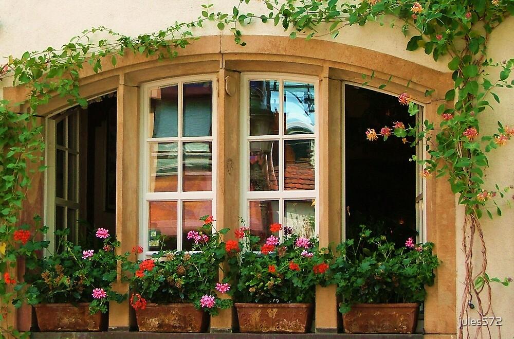 Window Garden by jules572