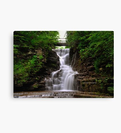 Ithaca's Buttermilk falls I Canvas Print