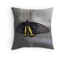 Butterfly June Throw Pillow