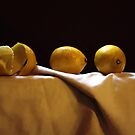 Lemons by Barry W  King