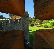 The Lion Bridge from Alnwick Castle by Reinhardt