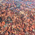 Rippled Rocks by Karen K Smith