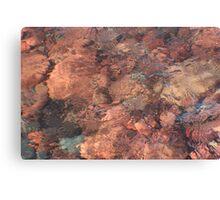 Sunset Rocks Canvas Print