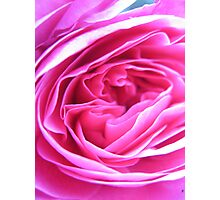 Sugar Pink Folds Photographic Print