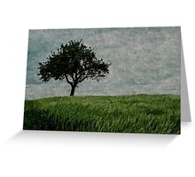 Fields of Green Skies of White Greeting Card
