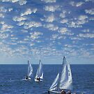 Around the World - Sailboats by Harvey Schiller