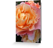 Tissue Crunch Rose Greeting Card