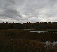 Ominous Sky - Collins Creek Marsh by Allen Lucas